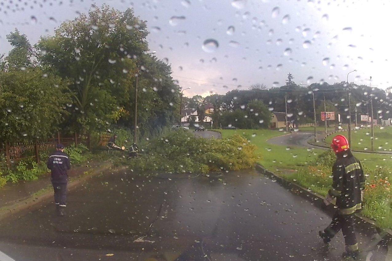 Апокаліпсис на Хмельниччині: що залишив після себе вчорашній ураган, фото-1