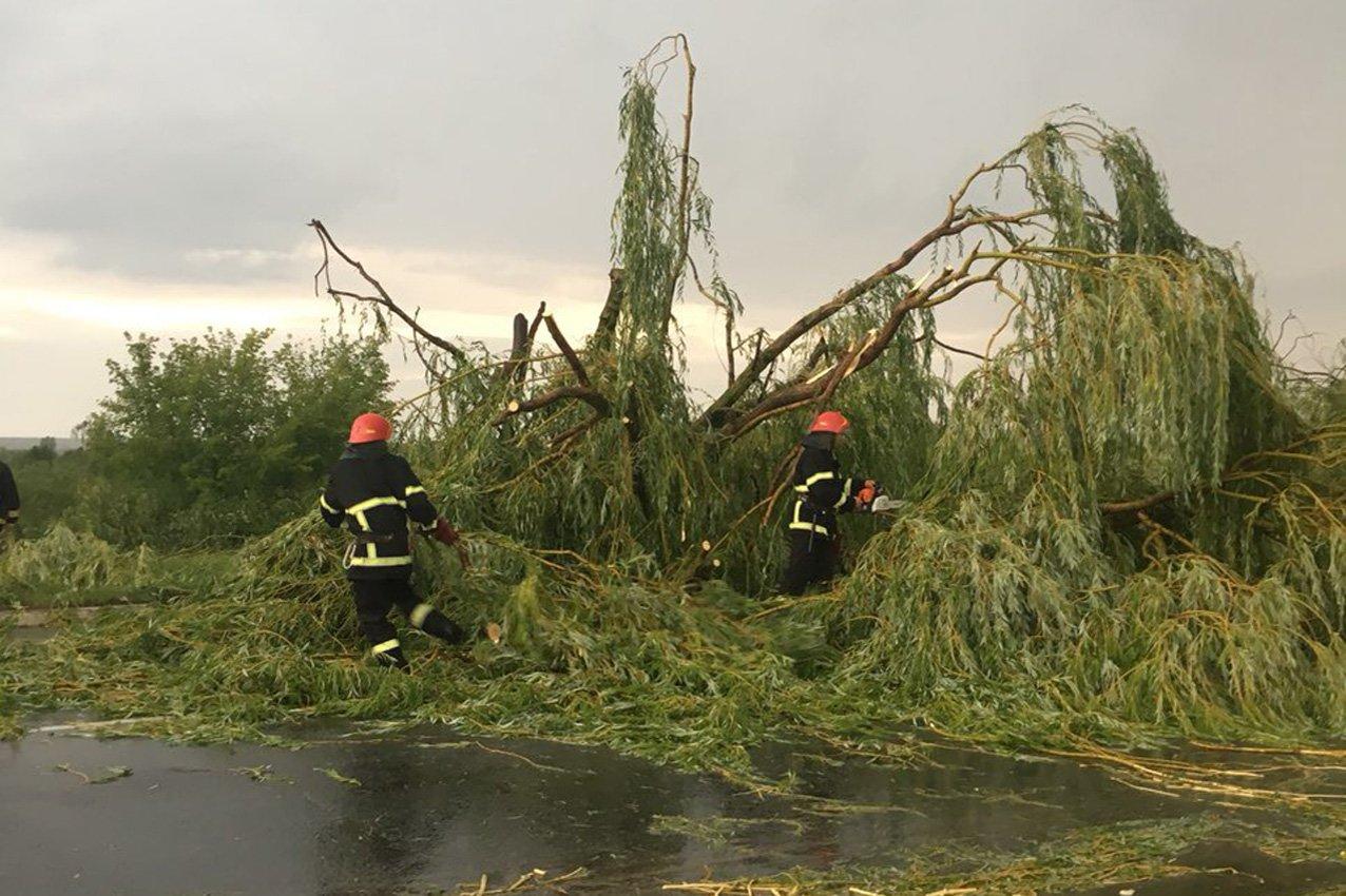 Апокаліпсис на Хмельниччині: що залишив після себе вчорашній ураган, фото-9