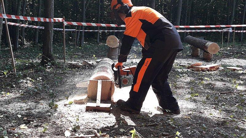 Кам'янець-Подільський лісгосп провів конкурс звалювальників лісу, фото-5