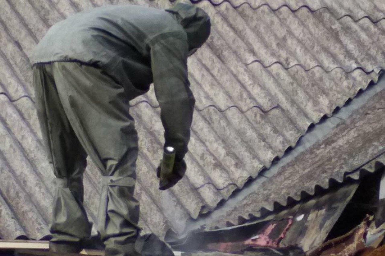 Небезпечні комахи не припиняють хвилювати кам'янчан, фото-1