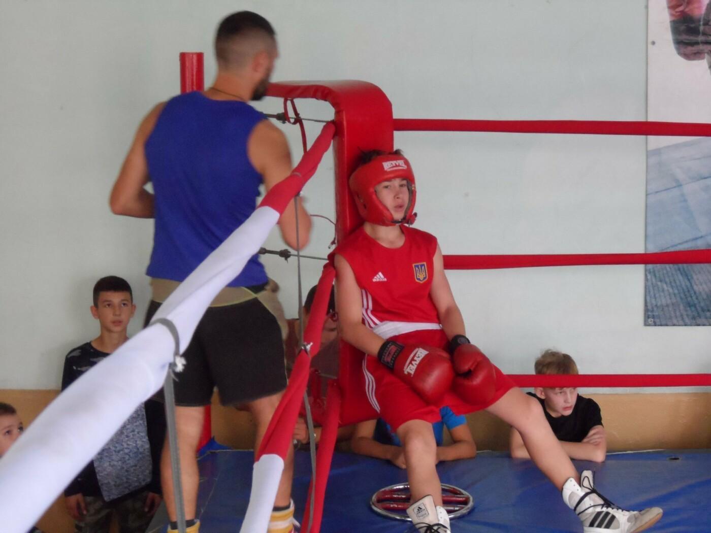 50 кам'янецьких боксерів взяли участь у відкритій першості з боксу, фото-2
