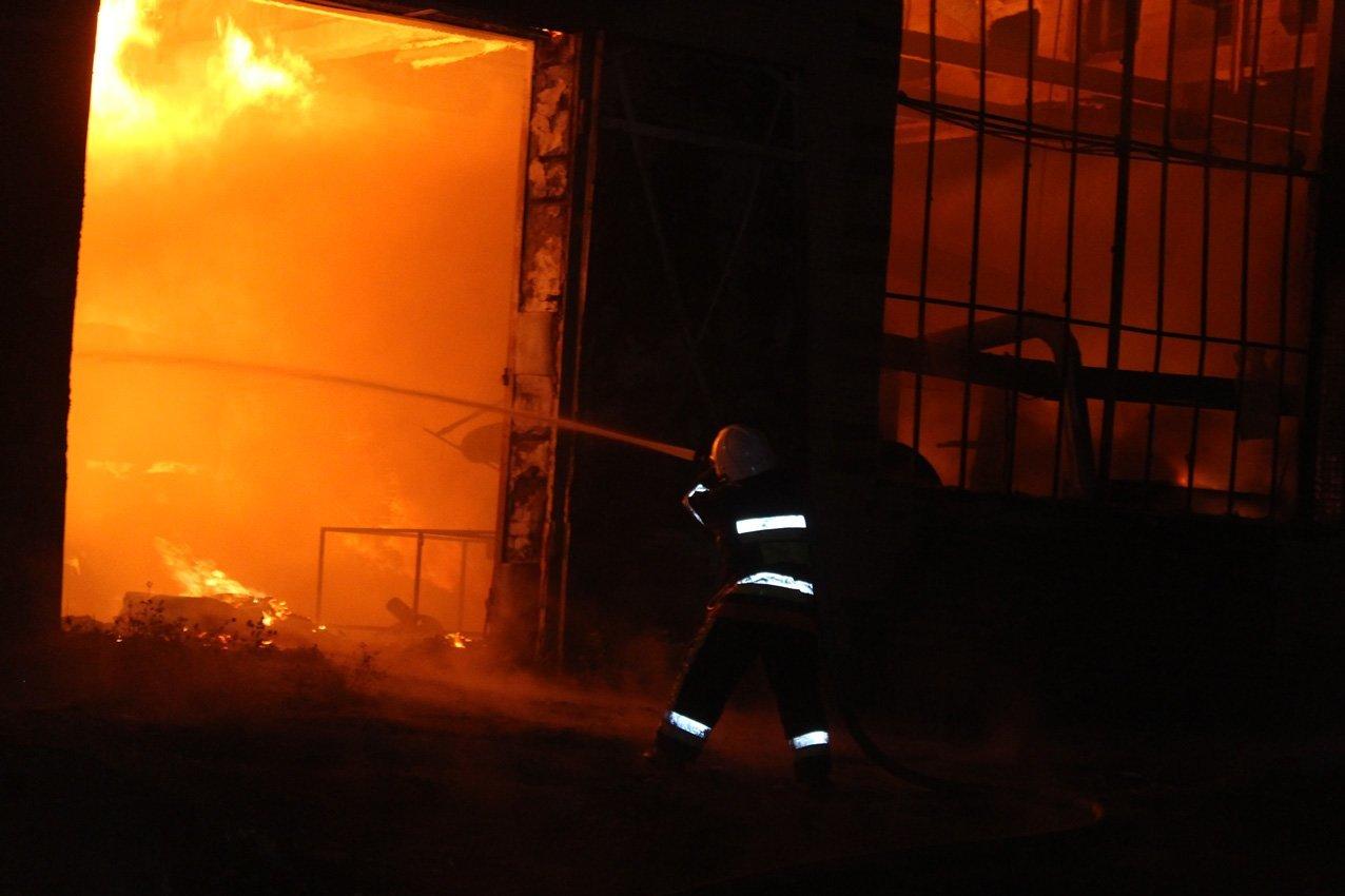 Масштабна пожежа на деревообробному підприємстві у Дунаївцях: на місці пригоди загинув рятувальник, фото-1