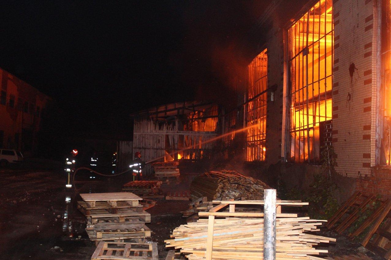 Масштабна пожежа на деревообробному підприємстві у Дунаївцях: на місці пригоди загинув рятувальник, фото-5