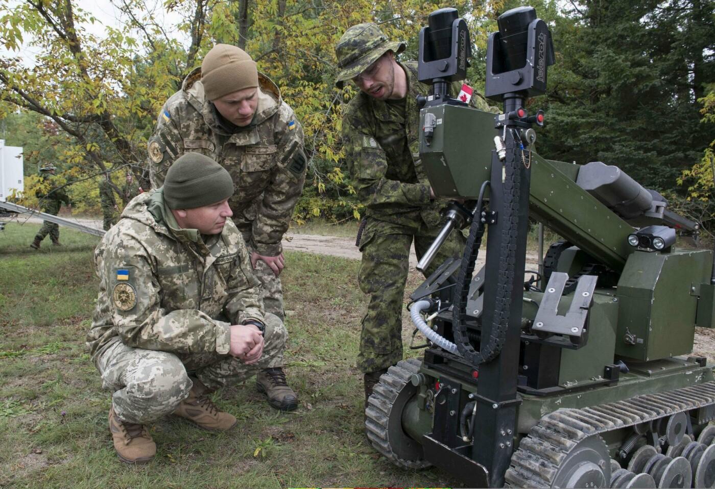 """У протидії вибуховим пристроям на """"Ardent Defender - 18"""" українські сапери найкращі, фото-8"""