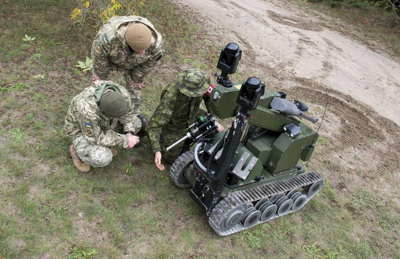 """У протидії вибуховим пристроям на """"Ardent Defender - 18"""" українські сапери найкращі, фото-10"""