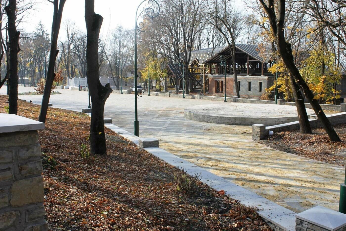 Цієї зими центральна ялинка міста змінить місце локації, фото-3