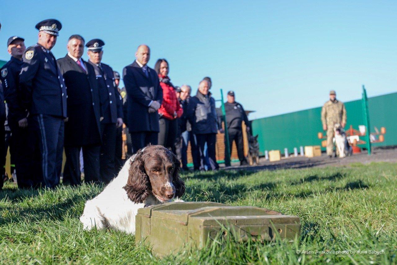У Хмельницькому відкрили новий кінологічний центр, де готуватимуть службових собак для всіх структур МВС, фото-7