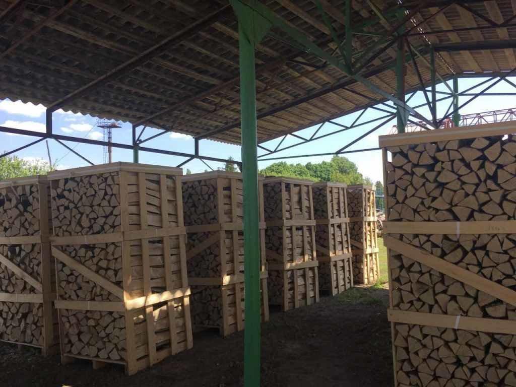 Кам'янець-Подільське лісництво продало дров на понад 9 млн гривень, фото-1