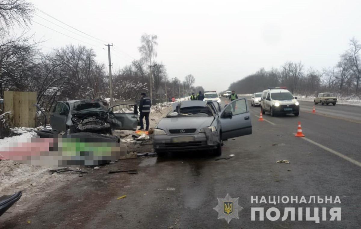 У жахливій ДТП на Житомирщині загинули троє кам'янчан (Оновлено), фото-2