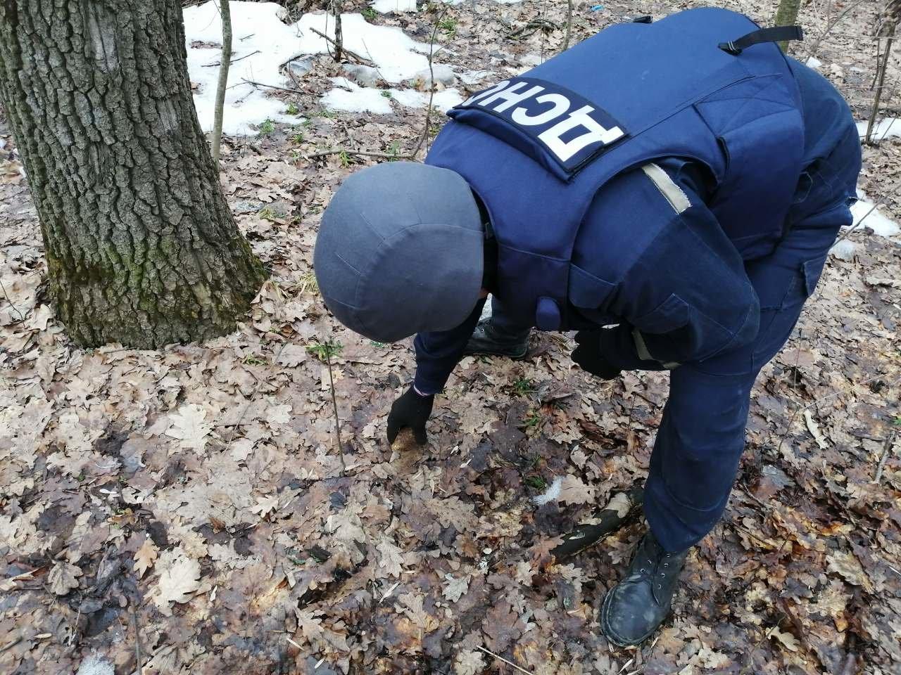 На Кам'янеччині знайшли ручну гранату, фото-1