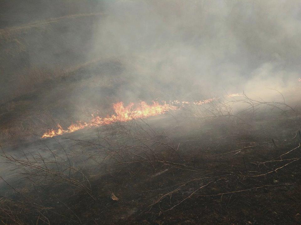 На Кам'янеччині в останній день зими  горіла суха трава, фото-5