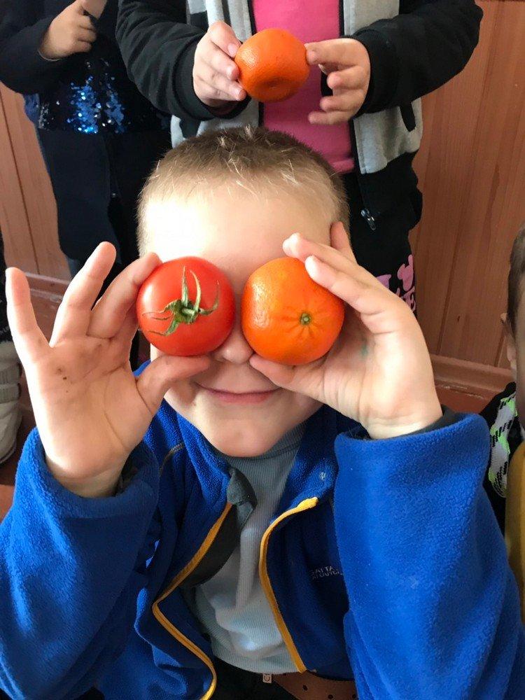 Одна зі шкіл Кам'янця працює за Всеукраїнською програмою здорового харчування, фото-9