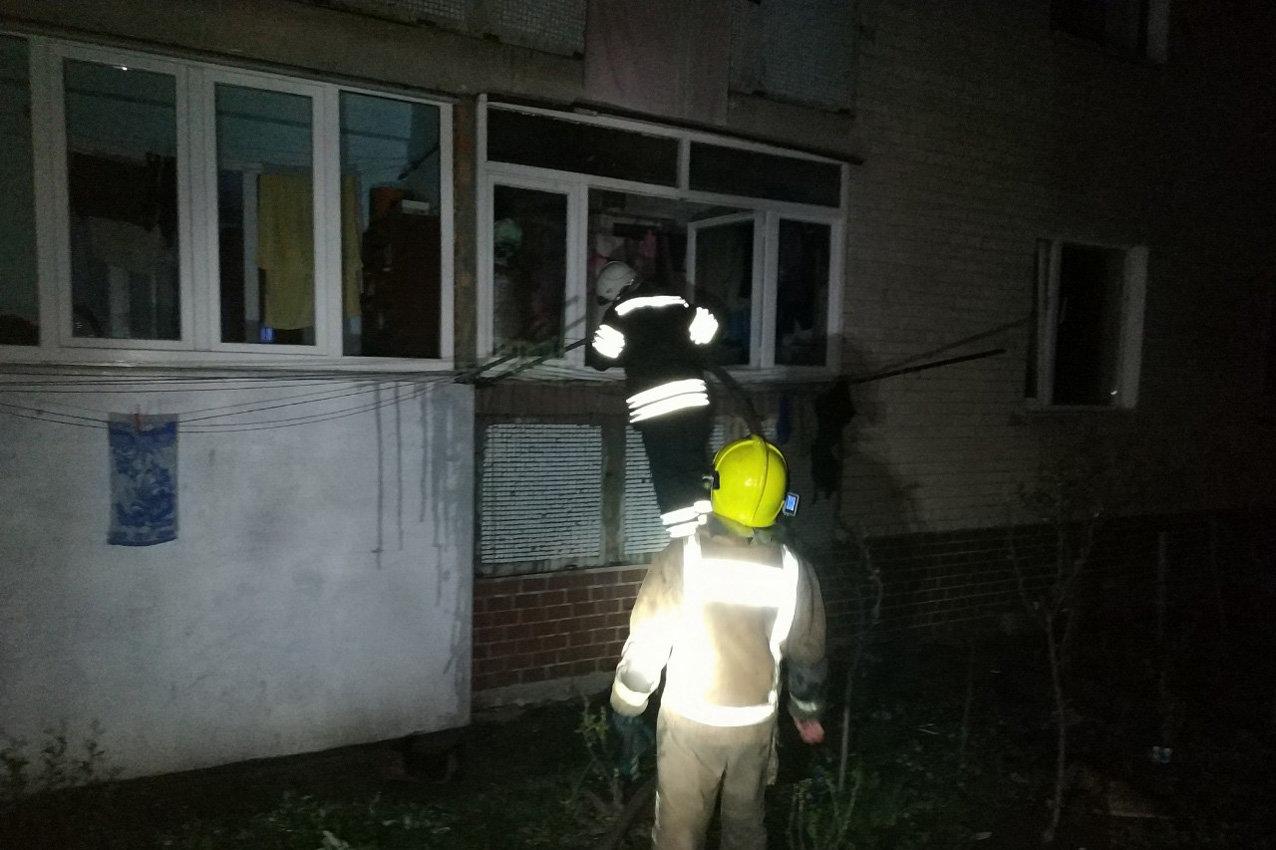 За минулу добу у Кам'янці ліквідували три пожежі, ймовірною причиною яких були підпали, фото-1