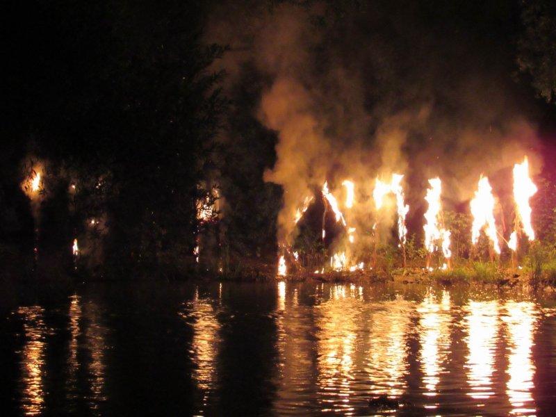 Вперше у селі Голосків відбулось грандіозне святкування Івана Купала, фото-23, Фото: Гуменецька ОТГ