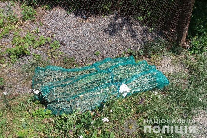 На Кам'янеччині у пенсіонерки вилучили понад 2 сотні кущів маку, фото-1