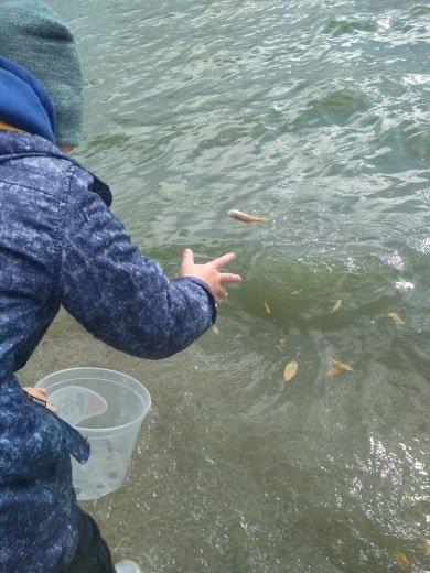 На Хмельниччині завершився триденний чемпіонат зі спортивного рибальства, фото-5, Фото: прес-служба Хмельницького рибоохоронного патруля