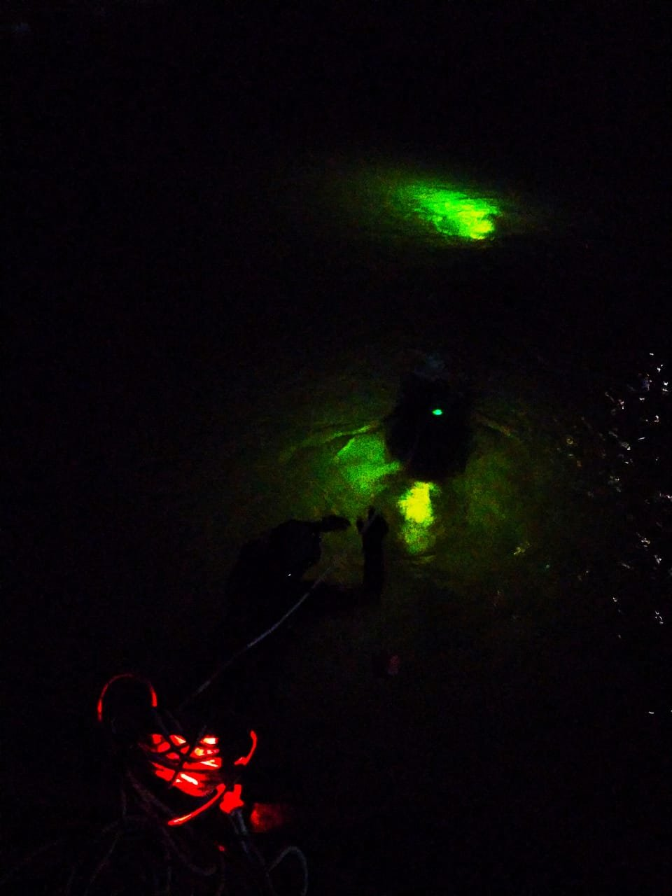 """У Кам'янці-Подільському 20-тьом слухачам присвоєно кваліфікацію """"Водолаз"""", фото-6, Фото: Центр розмінування"""