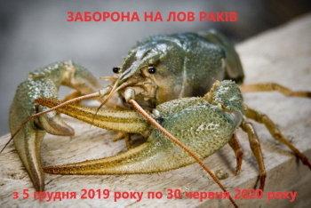 З 5 грудня в усіх водоймах Хмельниччини заборонено ловити раків , фото-1