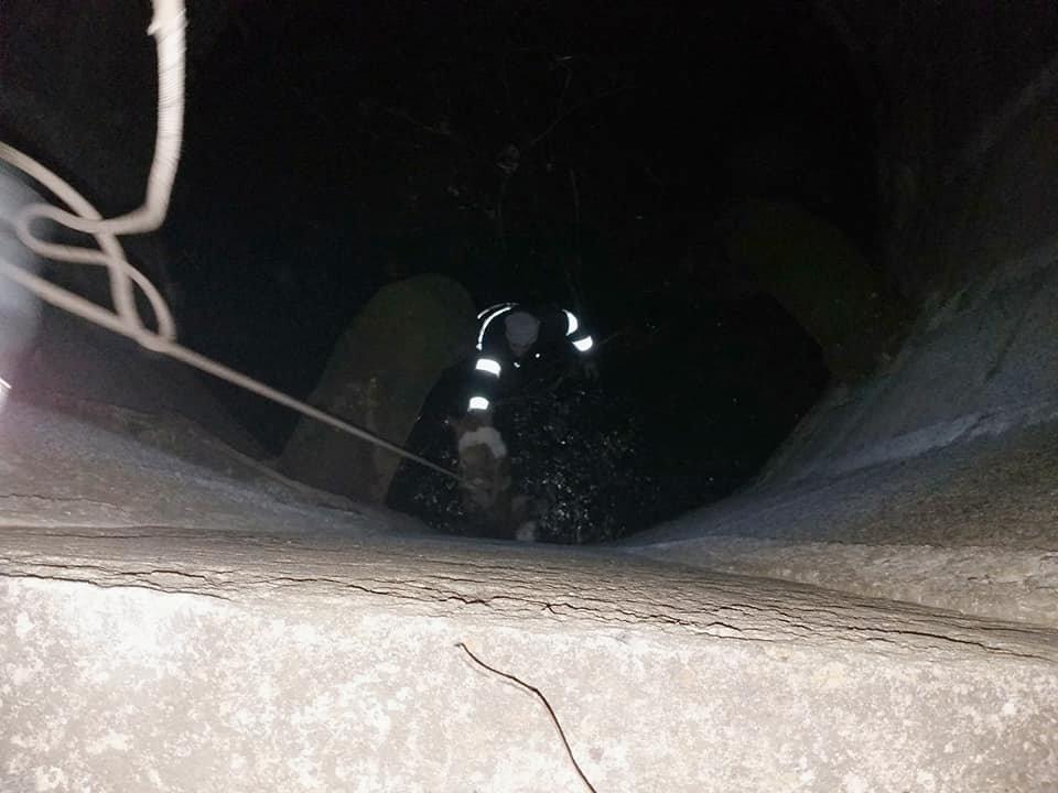"""Кам'янецькі рятувальники витягнули собаку з глибокої ями, фото-1, Фото: """"Служба порятунку 101 Кам'янець-Подільський"""""""