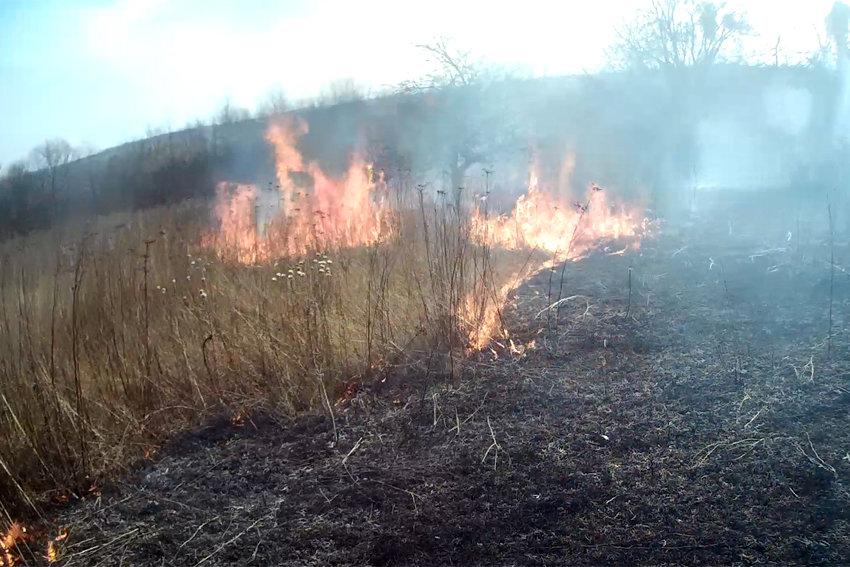 На Кам'янеччині рятувальники за добу ліквідували дві пожежі , фото-2, Фото: ГУ ДСНС України у Хмельницькій області
