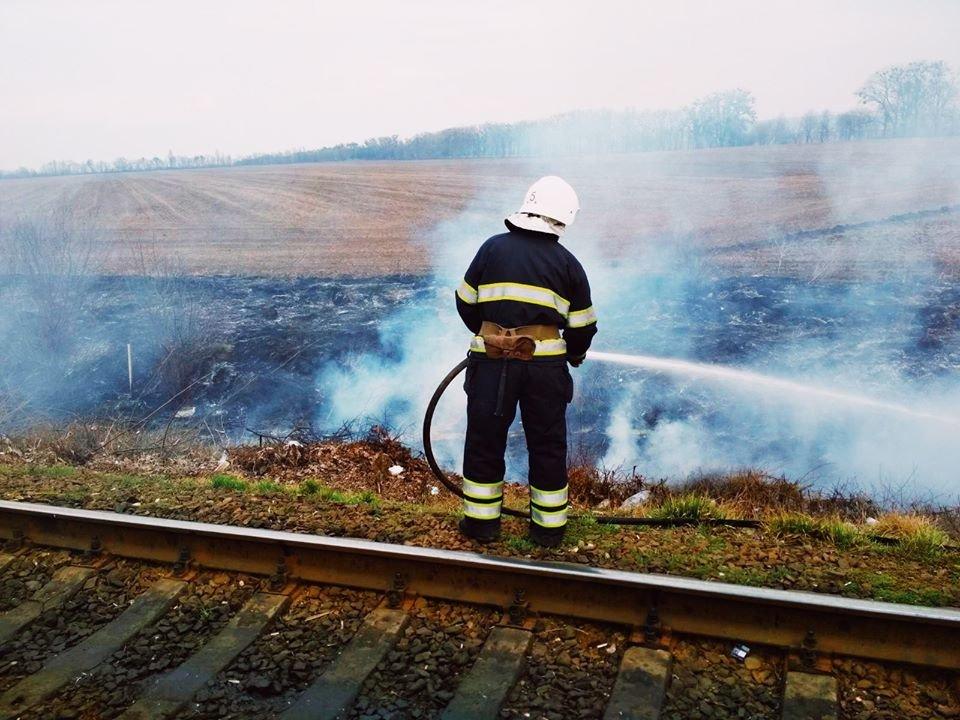 """У Кам'янці-Подільському рятувальники боролись із вогнем на відкритій території, фото-3, Фото: """"Служба порятунку 101 Кам'янець-Подільський"""""""