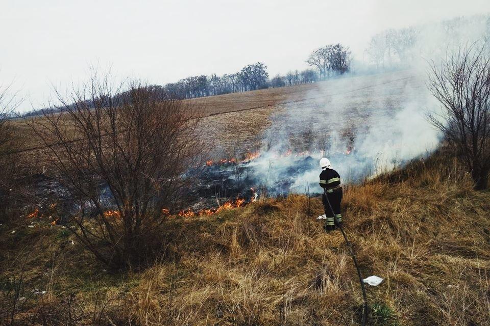 """У Кам'янці-Подільському рятувальники боролись із вогнем на відкритій території, фото-4, Фото: """"Служба порятунку 101 Кам'янець-Подільський"""""""