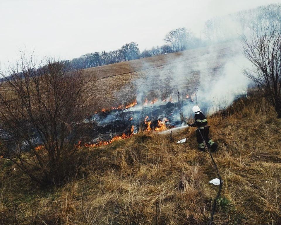 """У Кам'янці-Подільському рятувальники боролись із вогнем на відкритій території, фото-5, Фото: """"Служба порятунку 101 Кам'янець-Подільський"""""""