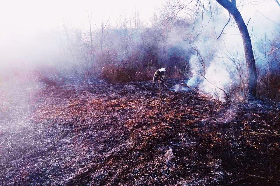 Рятувальники приборкали пожежу у селі Колибаївка, фото-4, Фото: ГУ ДСНС України у Хмельницькій області