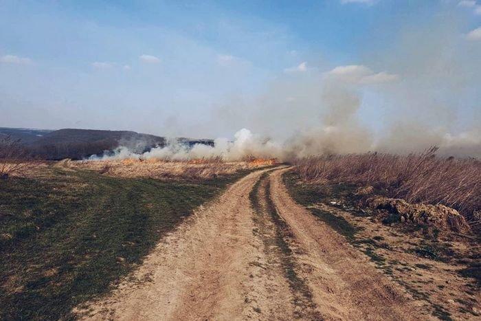 """На Кам'янеччині вогонь знищив близько двох гектарів рослин, фото-1, Фото: """"Служба порятунку 101 Кам'янець-Подільський"""""""