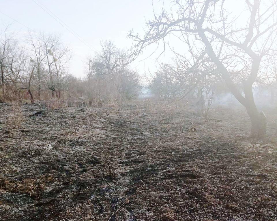 """На Кам'янеччині вогонь знищив близько двох гектарів рослин, фото-2, Фото: """"Служба порятунку 101 Кам'янець-Подільський"""""""
