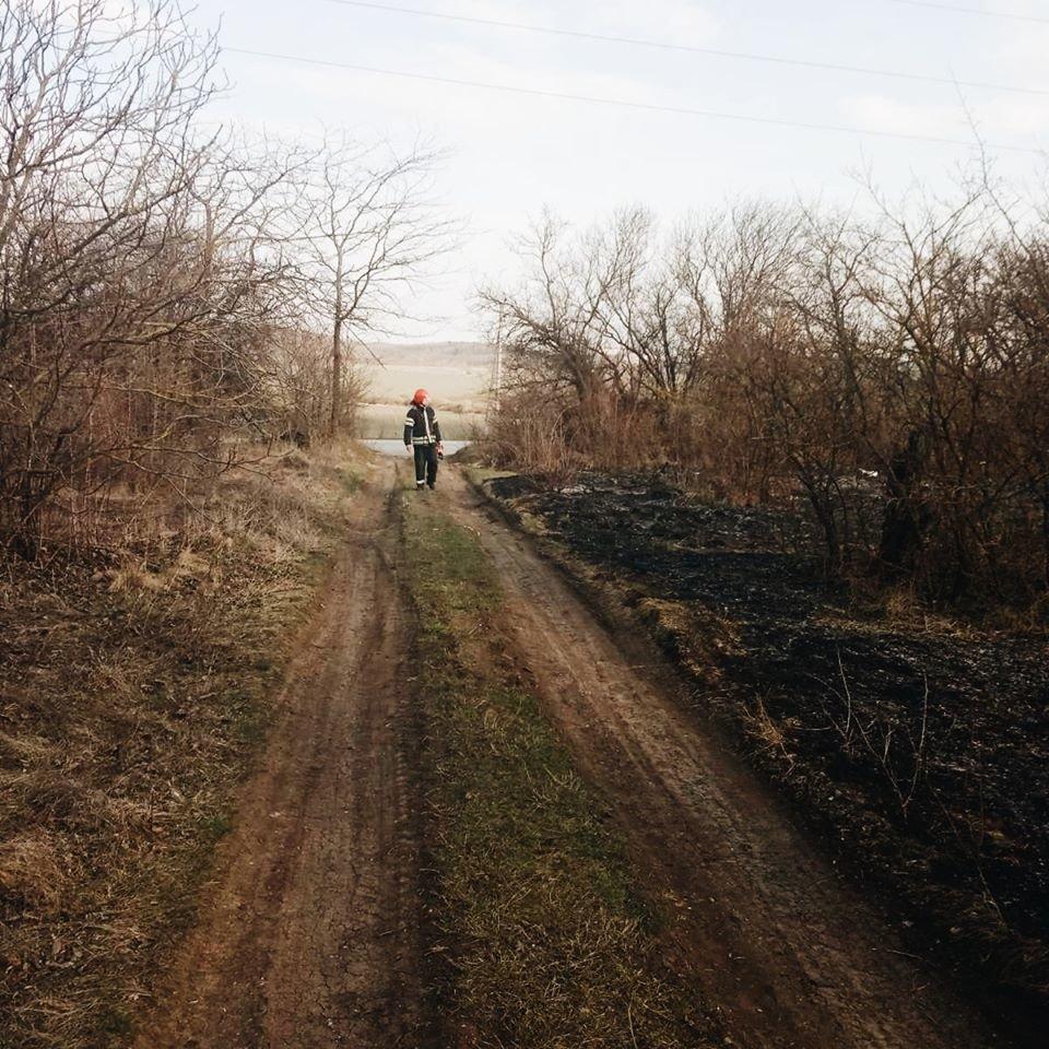 """На Кам'янеччині вогонь знищив близько двох гектарів рослин, фото-3, Фото: """"Служба порятунку 101 Кам'янець-Подільський"""""""