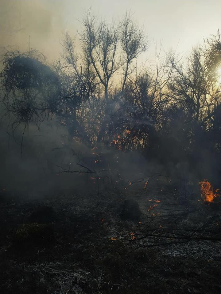 """У Слобідці Кульчієвецькій рятувальники приборкували вогонь, фото-1, Фото: """"Служба порятунку 101 Кам'янець-Подільський"""""""
