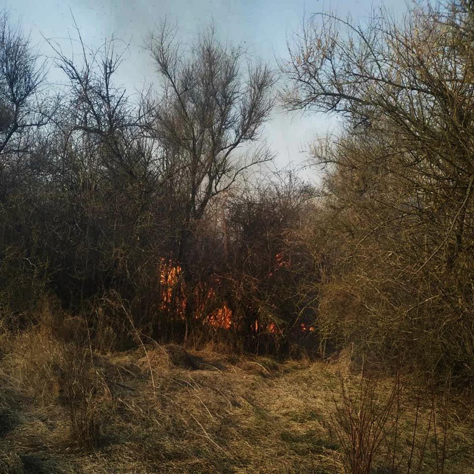 """У Слобідці Кульчієвецькій рятувальники приборкували вогонь, фото-2, Фото: """"Служба порятунку 101 Кам'янець-Подільський"""""""
