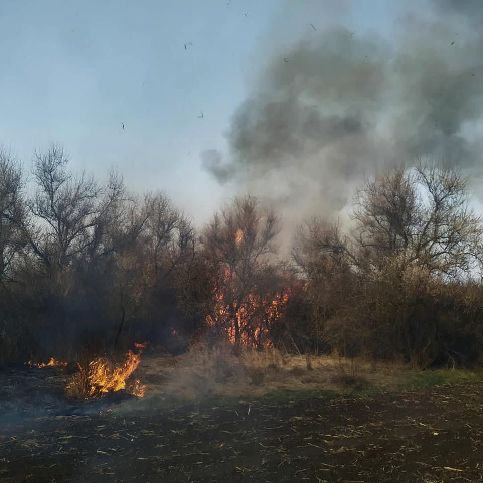 """У Слобідці Кульчієвецькій рятувальники приборкували вогонь, фото-3, Фото: """"Служба порятунку 101 Кам'янець-Подільський"""""""