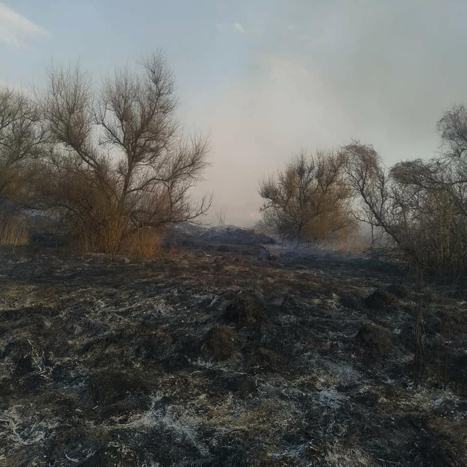 """У Слобідці Кульчієвецькій рятувальники приборкували вогонь, фото-5, Фото: """"Служба порятунку 101 Кам'янець-Подільський"""""""