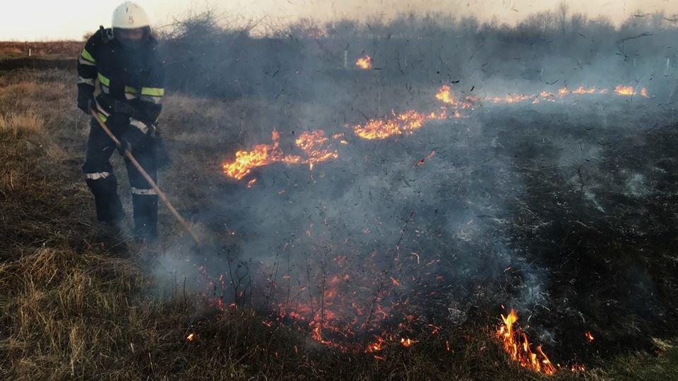 На Кам'янеччині рятувальники ліквідували загоряння сухої трави, фото-4, Фото: ГУ ДСНС України у Хмельницькій області