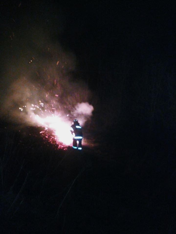 """Під час горіння сухостою на Кам'янеччині з вогню врятували маленьких жителів, фото-3, Фото: """"Служба порятунку 101 Кам'янець-Подільський"""""""