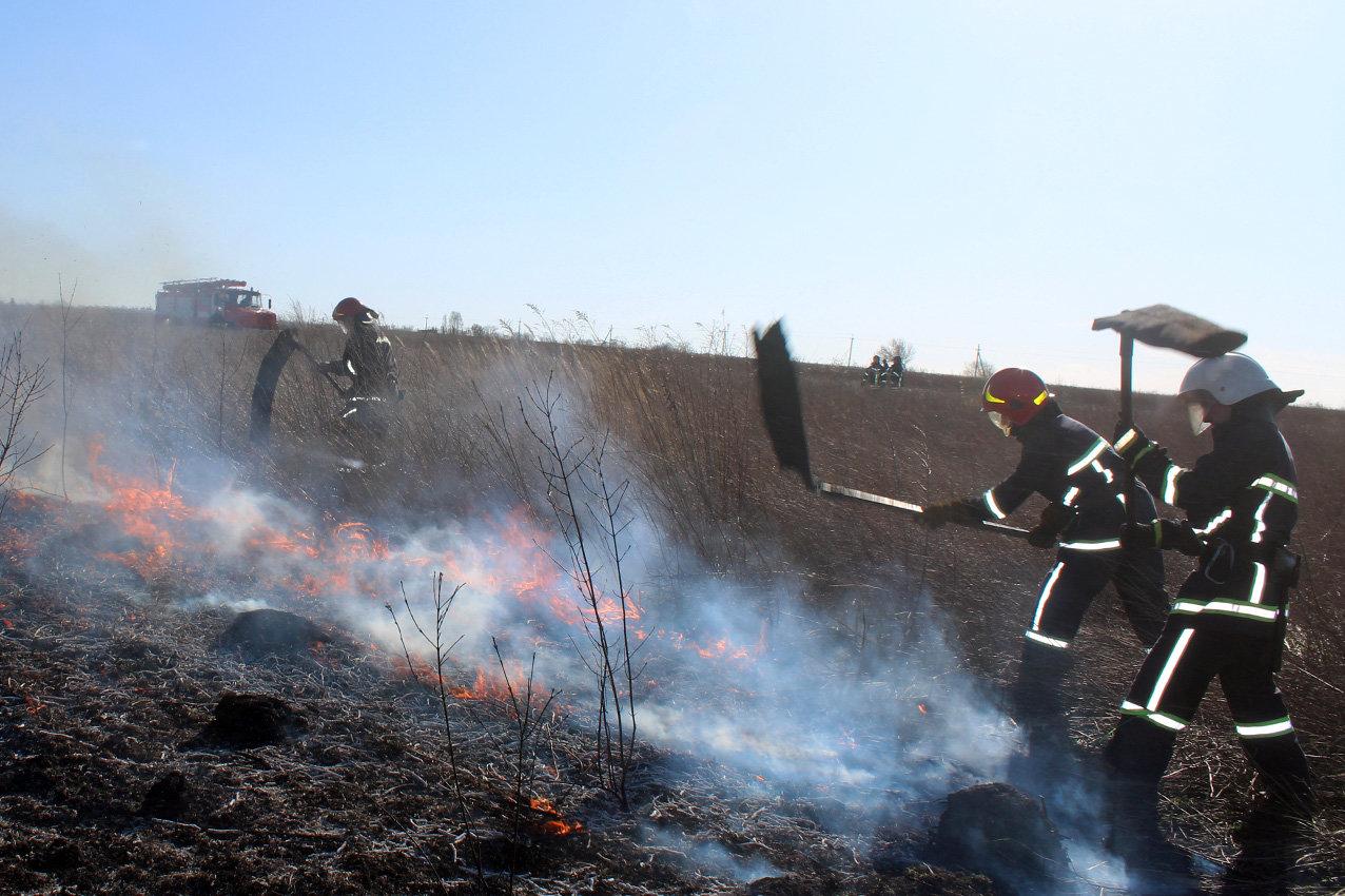 Суха трава на Кам'янеччині не припиняє горіти, фото-2, Фото: ГУ ДСНС України у Хмельницькій області