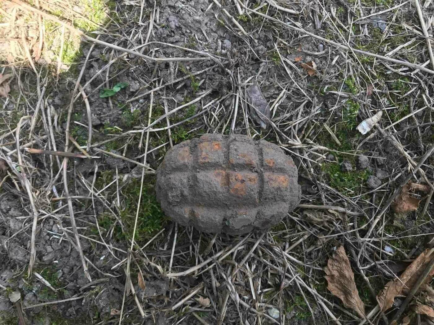 У кар'єрі на Кам'янеччині знищили знахідки часів війни, фото-1
