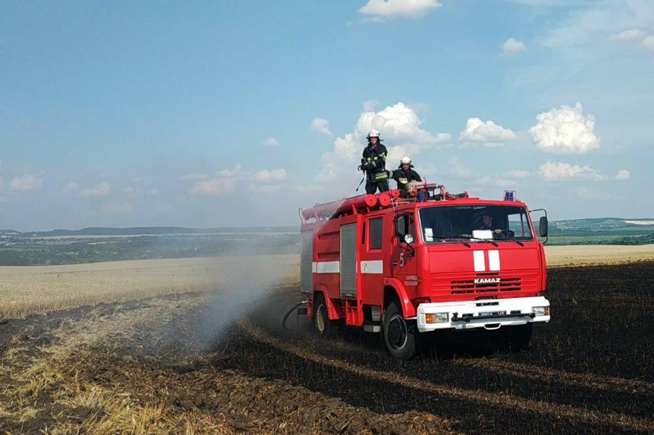 На Кам'янеччині вогнеборці ліквідували масштабну пожежу на полі, фото-2, Фото: ГУ ДСНС України у Хмельницькій області