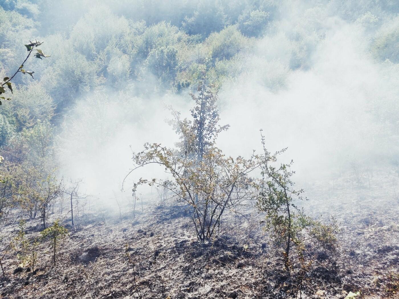 """На Кам'янеччині горіла суха рослинність, фото-2, Фото: """"Служба порятунку 101 Кам'янець-Подільський"""""""