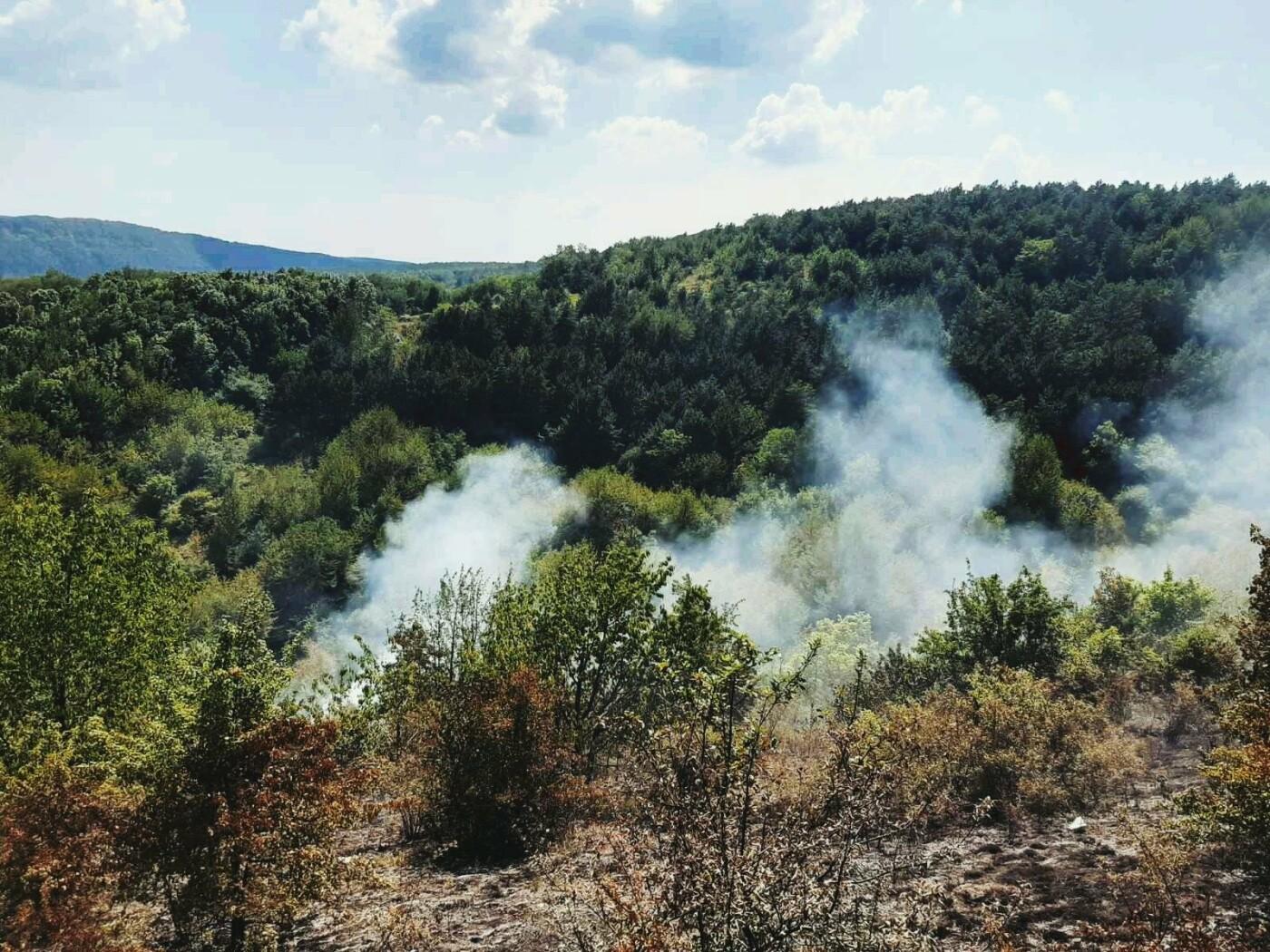 """На Кам'янеччині горіла суха рослинність, фото-3, Фото: """"Служба порятунку 101 Кам'янець-Подільський"""""""