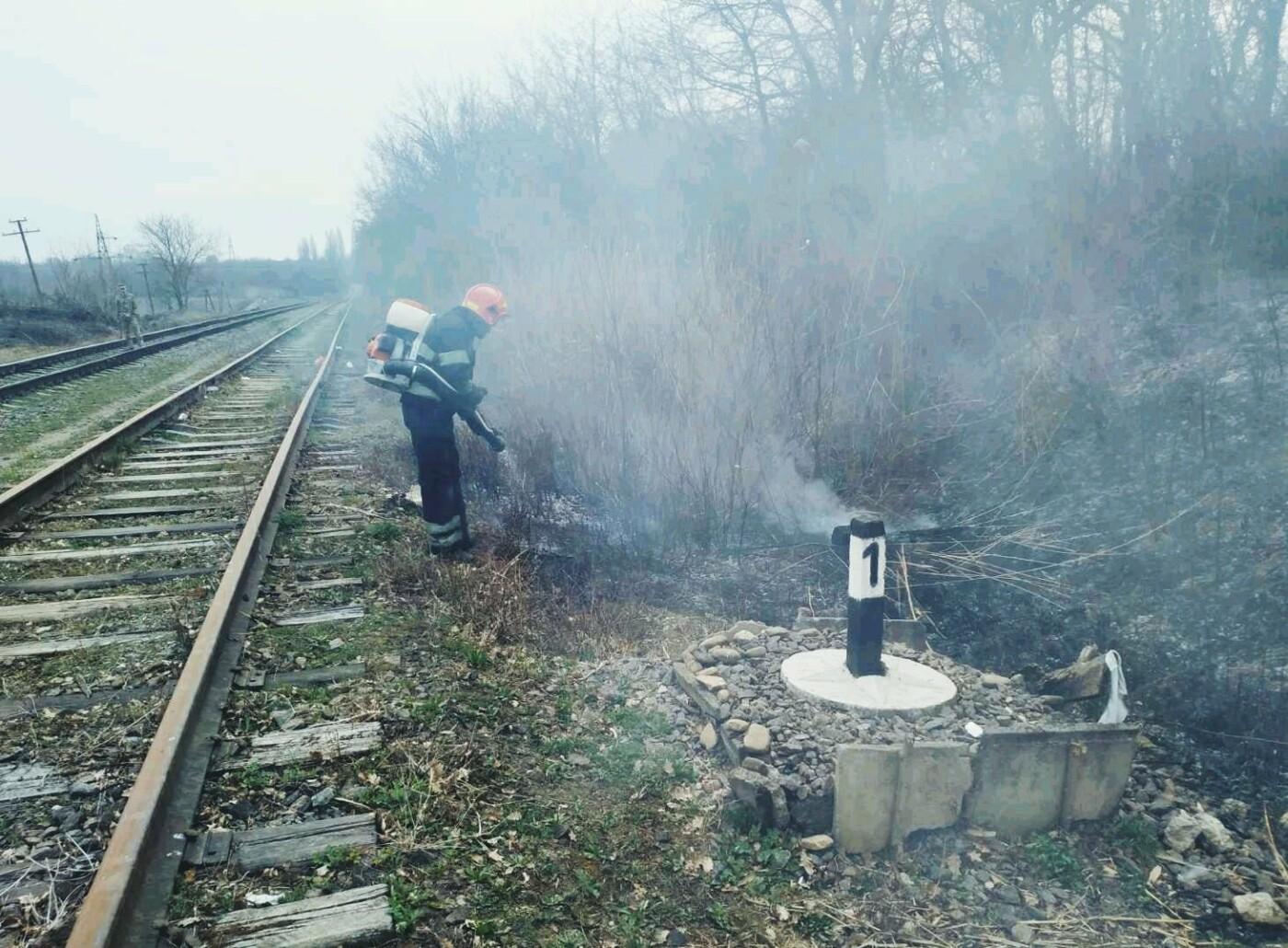 По вулиці Крип'якевича рятувальники ліквідовували загоряння сухої трави, фото-2