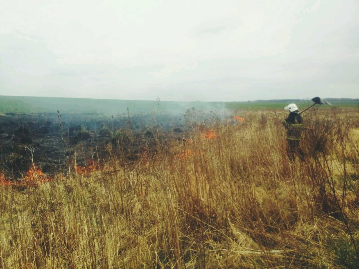 На Кам'янеччині ДСНСівці ліквідували пожежу сухої трави, фото-3