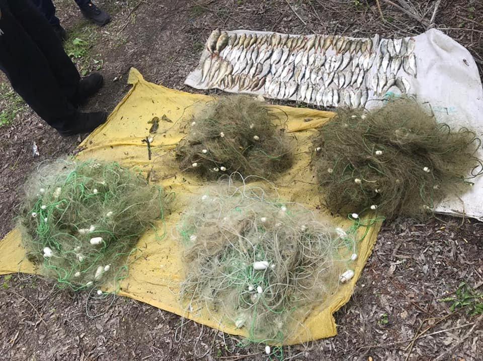 На Кам'янеччині виявили 21-річного браконьєра , фото-1