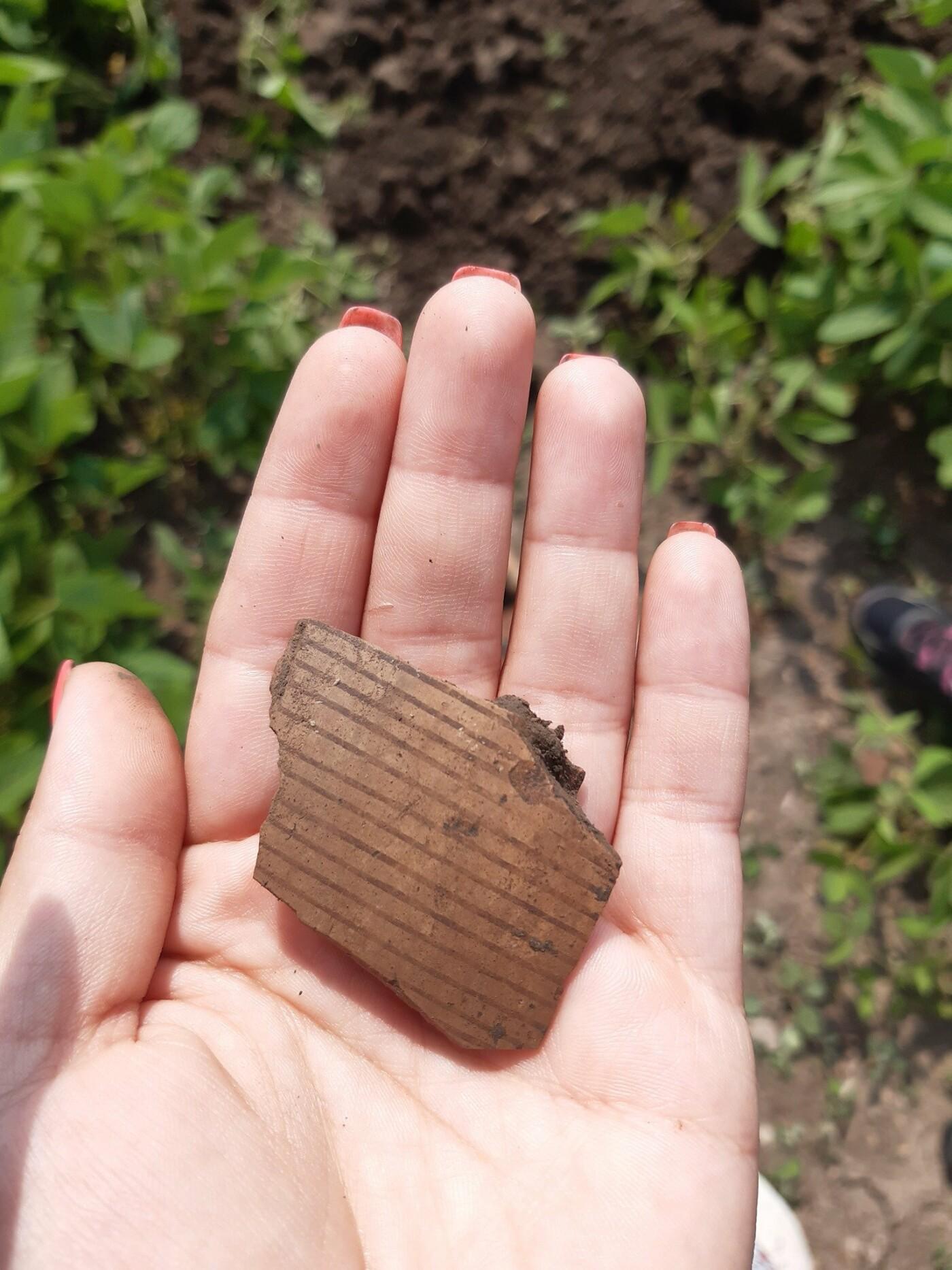 В Голоскові досліджують трипільське поселення, відоме унікальною керамікою, фото-3, Фото: Гуменеччини Туристичної